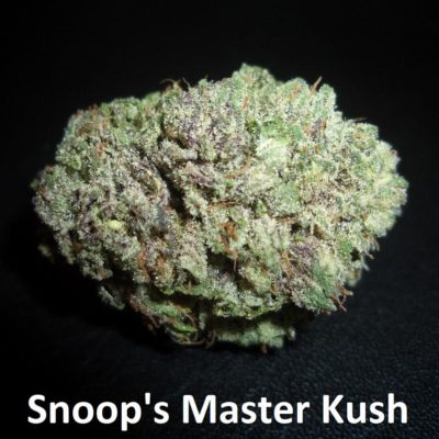 SnoopsMasterKush