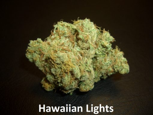 Hawaiian Lights - 1