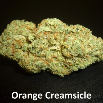 Orange Creamsicle - 1