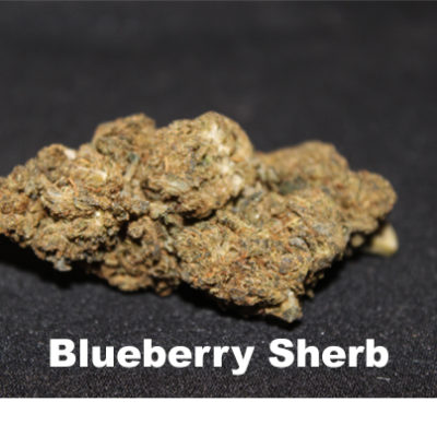 blueberry sherb