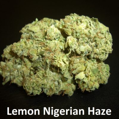 Lemon Nigerian Haze - 1