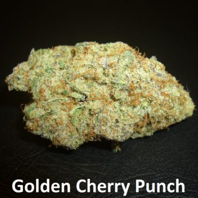 Golden Cherry Punch - 1